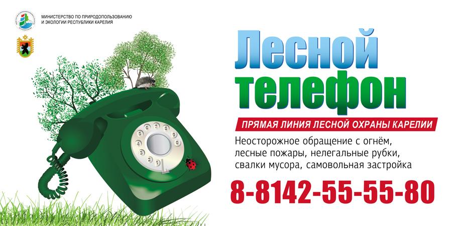 1 мая в ряде районов Карелии официально начинается пожароопасный сезон