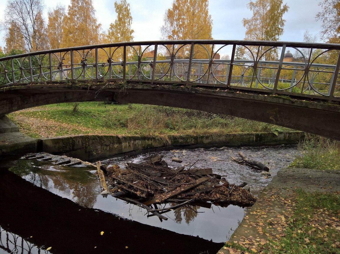 100-летие Республики Карелия. В Петрозаводске очистят реку Неглинка